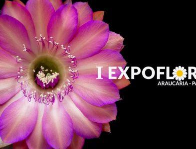 Expoflora 08 a 12 de maio